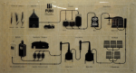 bigino di Puni - infografica, come si dice oggidì